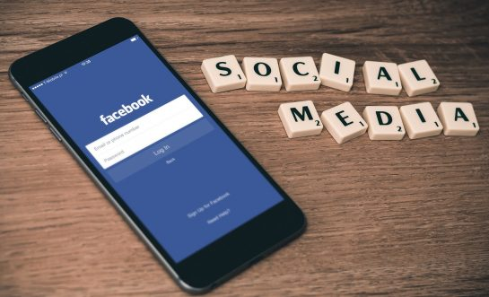 Social networks: from idea to business model